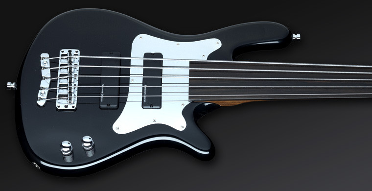 Steve Bailey Artist Serie  - Solid Black High Polish, fretless